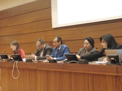 Joint symposium with the Women and Development Association of the International Human Rights Council in Geneva